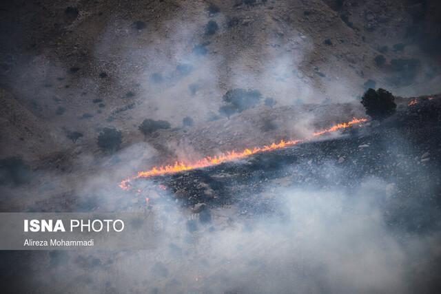 ادامه آتش سوزی در جنگل های اندیکا ، لزوم اعزام بالگرد آبپاش