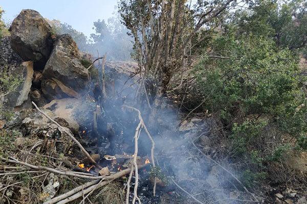 آتش سوزی در مراتع ماهور برنجی دزفول مهار شد